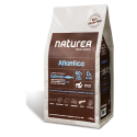 Naturea Atlantica (ryba)