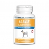 Alavis - kĺbová výživa pre veľké plemená